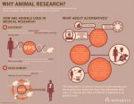 Medical research and animals
