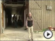 Equine Laminitis 2012 Update (Part 1) from the Animal Health