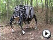 Pentagon unveils DARPA-made mule-drone . . .